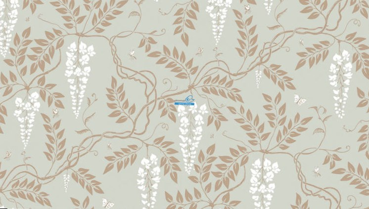 Обои Cole & Son Collection of Flowers 81/13055