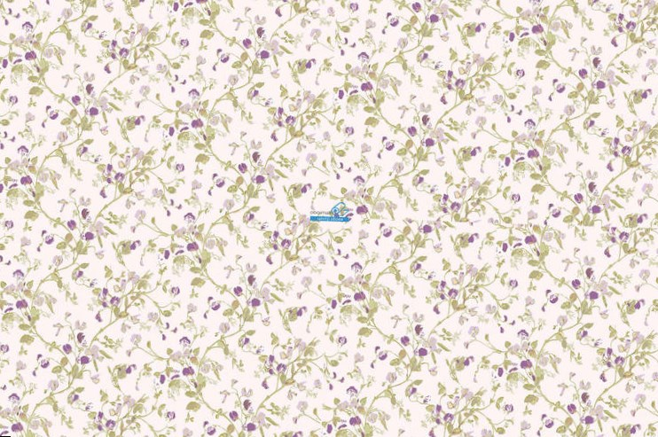 Обои Cole & Son Collection of Flowers 81/11047