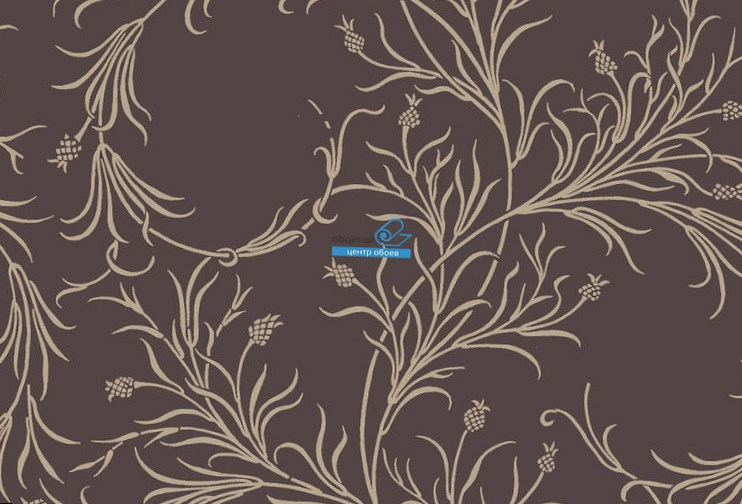 Обои Cole & Son Collection of Flowers 81/12053