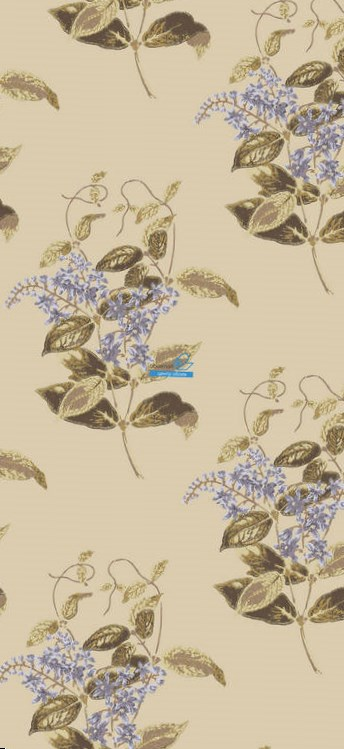 Обои Cole & Son Collection of Flowers 81/6026
