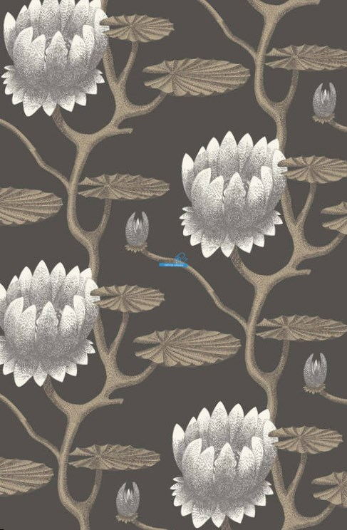 Обои Cole & Son Contemporary Restyled 95/4026