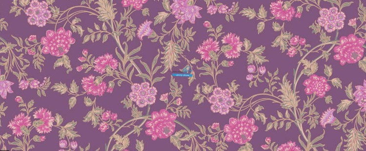 Обои Cole & Son Collection of Flowers 81/15066