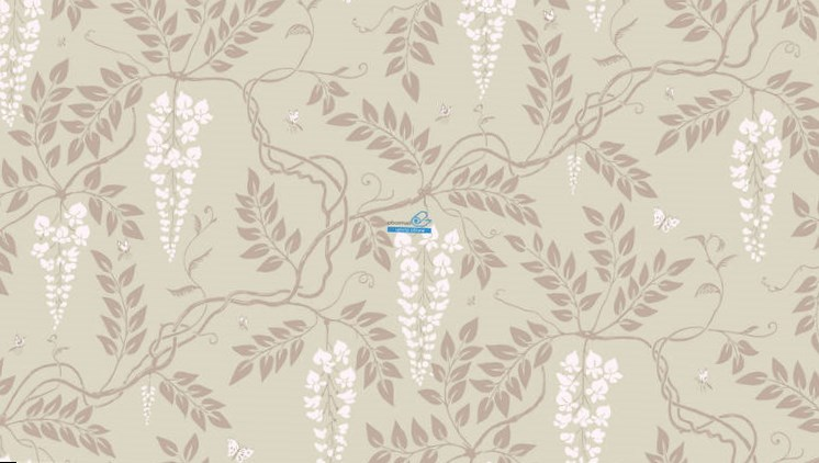 Обои Cole & Son Collection of Flowers 81/13056