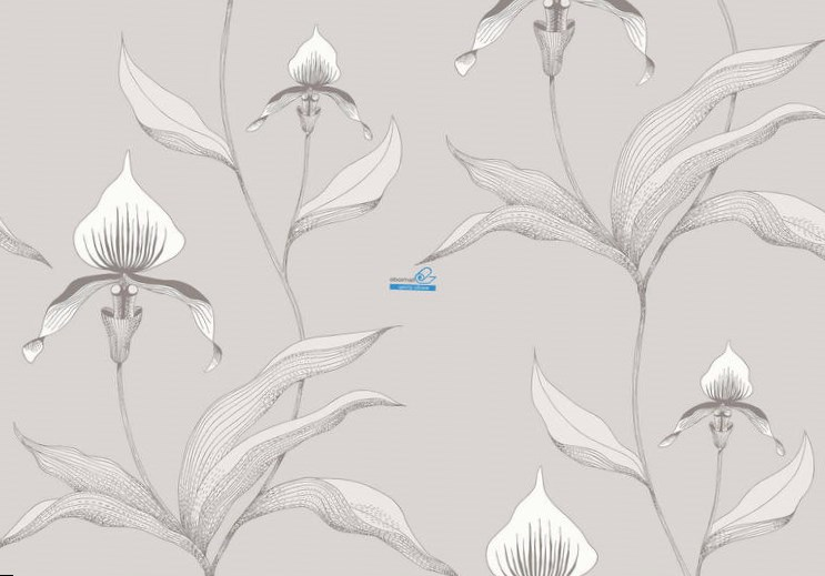 Обои Cole & Son Contemporary Restyled 95/10055