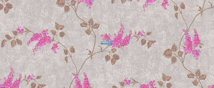 Обои Cole & Son Collection of Flowers 81/3012
